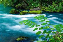 Ozark National Scenic Riverways, Missouri, United States