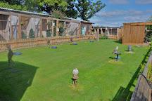 Battlefield Falconry Centre, Shrewsbury, United Kingdom
