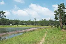 Kirirom National Park, Kampong Speu, Cambodia