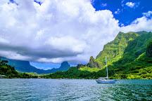 Enjoy Boat Tours Moorea, Papetoai, French Polynesia