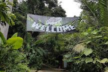 Jungle Xtrem Adventures Park, Chalong, Thailand