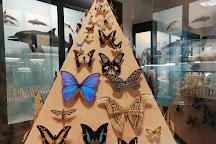 Museo Civico di Storia Naturale, Ferrara, Italy