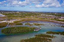 Bonefish Pond National Park, Nassau, Bahamas