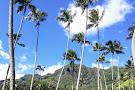 Kahana Bay Beach Park