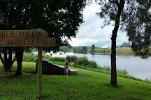Wingham Brush Nature Reserve, Wingham, Australia