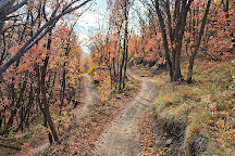 Dutch Hollow Trails, Midway, United States