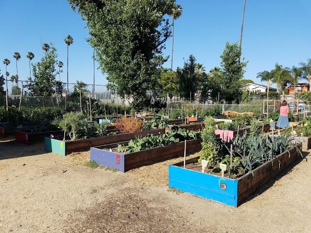 Fremont Wellness Center And Community Garden