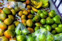 MariGourmet Supermarket, Marigot Bay, St. Lucia