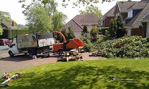Bailey Tree Services