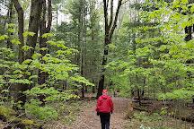 Long Sault Conservation Area, Bowmanville, Canada