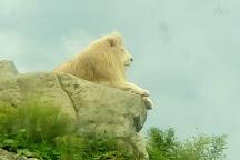 Isle of Wight Zoo, Sandown, United Kingdom