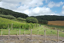 Godstone Vineyards, Godstone, United Kingdom