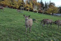 Wildnispark Zurich Langenberg, Langnau am Albis, Switzerland
