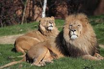 ZooParc de Beauval, Saint-Aignan, France