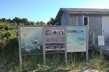 Shackleford Banks, Harkers Island, United States