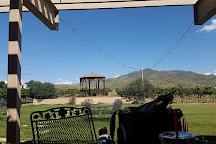 Coronado Vineyards, Willcox, United States