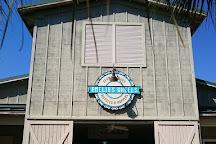 Amelia's Wheels, Amelia Island, United States