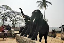 Dubare Elephant Camp, Kodagu (Coorg), India