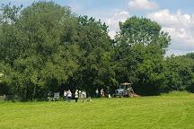 UK Wolf Conservation Trust, Beenham, United Kingdom