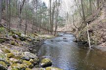 Mianus River Gorge Preserve, Bedford, United States