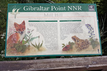 Gibraltar Point National Nature Reserve, Skegness, United Kingdom