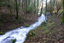 Sušec Waterfall, Ilirska Bistrica, Slovenia