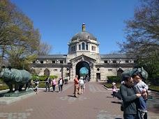 Bronx Zoo Store new-york-city USA