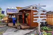 Glacier Smoothie Soaps LLC, Juneau, United States