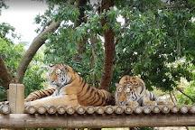 Johannesburg Zoo, Johannesburg, South Africa