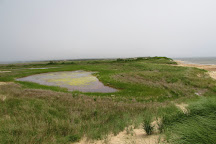 Hither Hills State Park, Montauk, United States