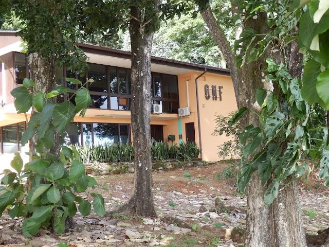 Office national des forêts - Direction territoriale de Guyane