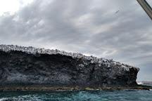 Baja Adventure Co., La Paz, Mexico