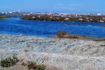 Bay of Cádiz Natural Park, El Puerto de Santa Maria, Spain