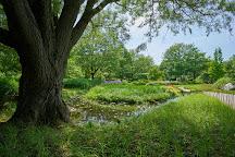Japanese Garden, Montreal, Canada