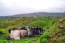 Mount Cameroon, Buea, Cameroon