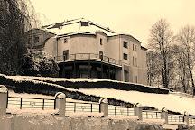 Villa Esche, Chemnitz, Germany