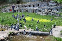 Oliwa Zoo, Gdansk, Poland