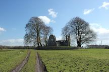 Monaincha Abbey, Roscrea, Ireland