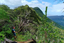 Aihualama Trail, Honolulu, United States