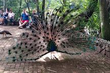 Parque do Inga, Maringa, Brazil