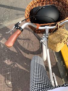 Bicicletas Vintage Perú - Alry Cycles 6