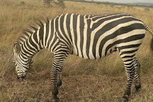 Wasili Kenya Safaris, Nairobi, Kenya