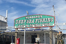 Hubbard's Marina, Madeira Beach, United States