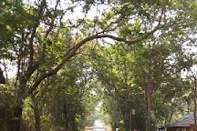 Sanjay Gandhi National Park, Mumbai, India