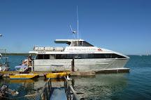 Lady Musgrave Island, Lady Musgrave Island, Australia