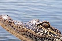 Ultimate Swamp Adventures, Westwego, United States