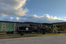 Gorham Moose Tours, Gorham, United States