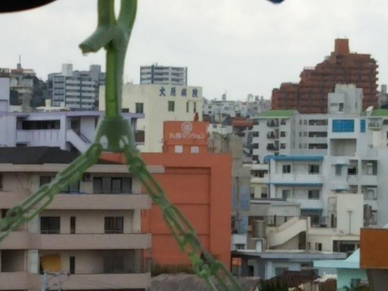 福岡高等検察庁那覇支部 (沖縄県...
