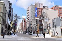 Tanukikoji Shopping Street, Sapporo, Japan