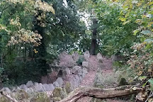 Wild Wood Adventure, Guildford, United Kingdom